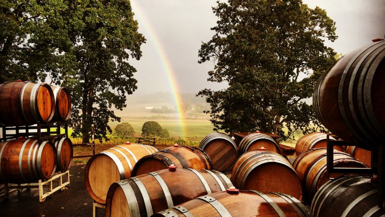 Barrels in a field with a rainbow