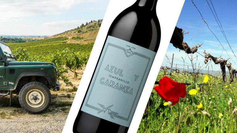 Azul y Garanza vineyards