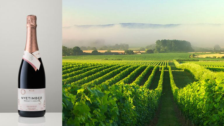 Nyetimber vineyards