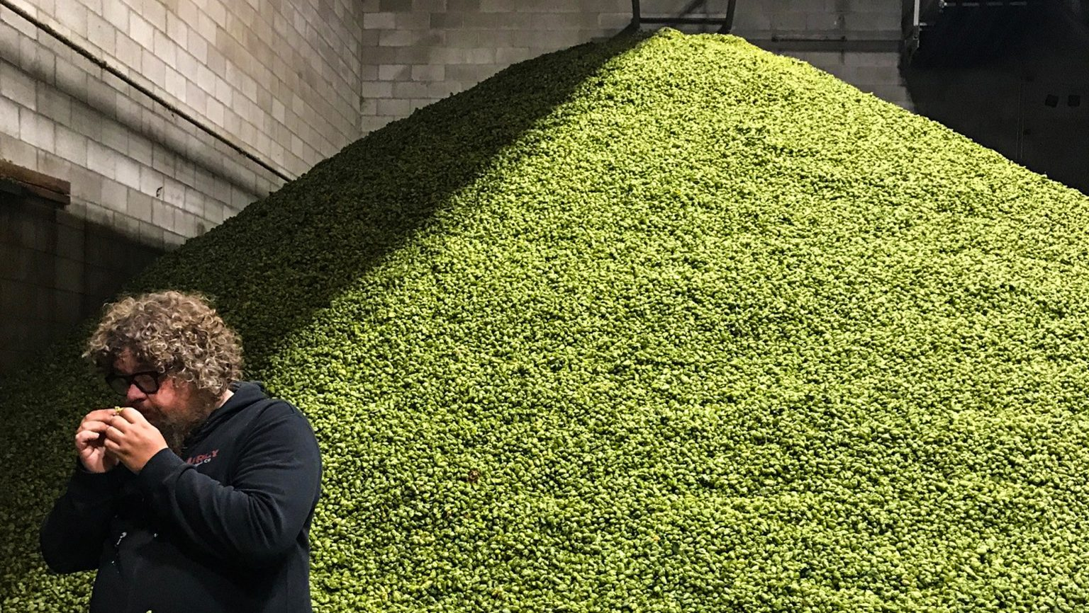 Why Brewers Should Be Going to Hop Harvests