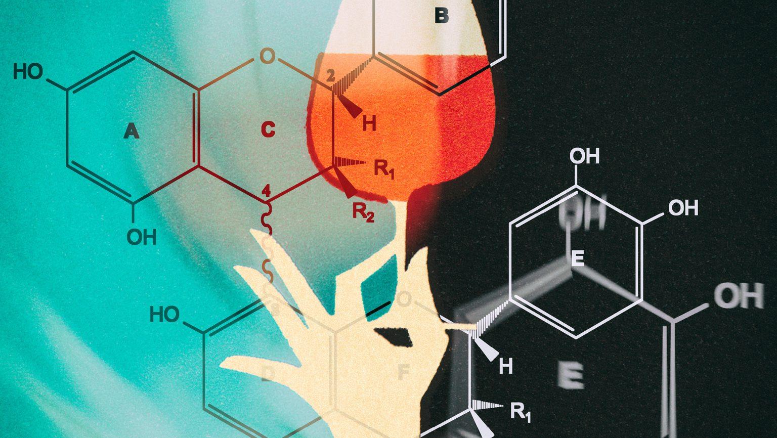 Tannin molecules
