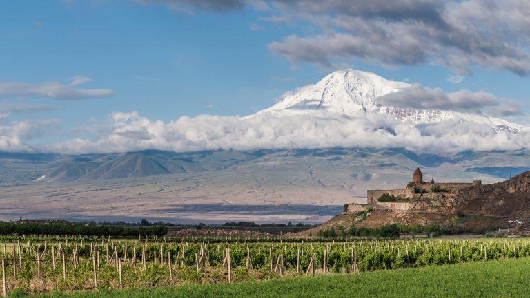 Yacoubian Hobbs vineyards